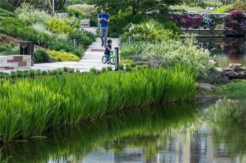 植物造景·实用景观设计来一波_20