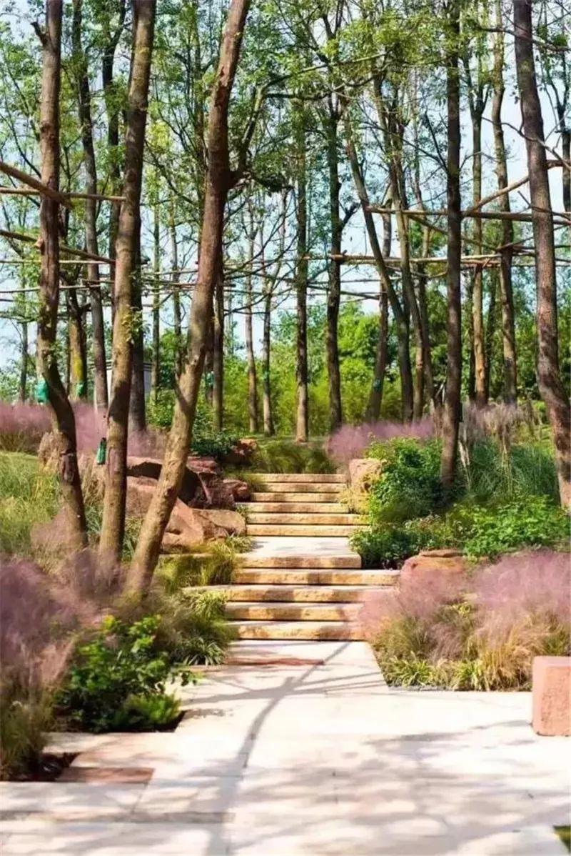 植物造景·实用景观设计来一波_7