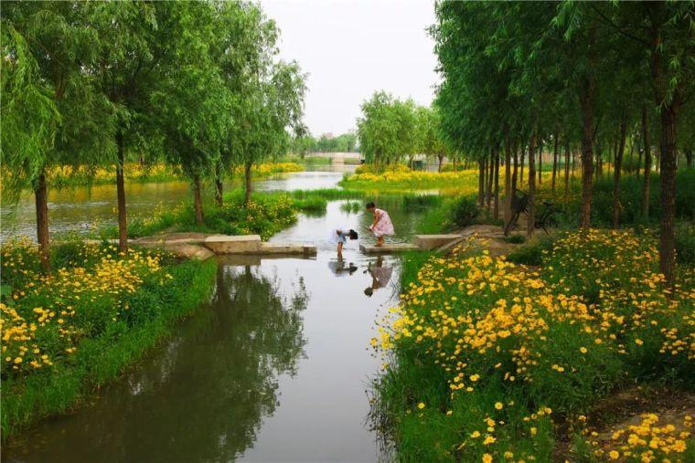 全面推进生态治水,景观设计师能做些什么?_3