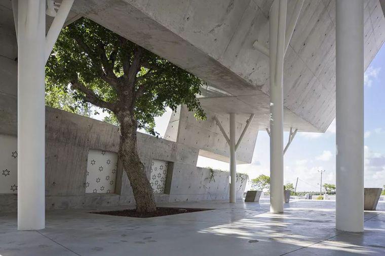当房子遇上树,这群设计师要上天_33
