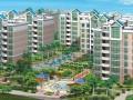 房地产发展和现状及对风险控制和经营取向的研究(共15页)