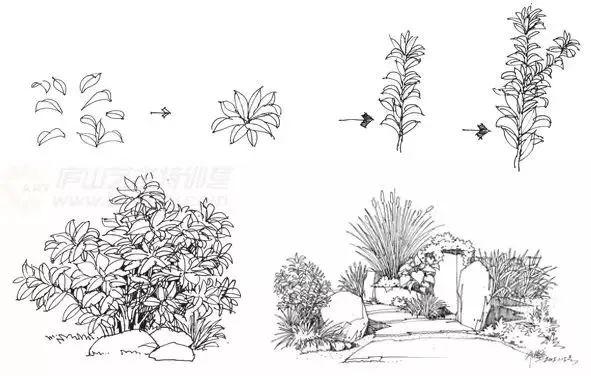 作为景观设计师必须掌握的景观线稿表现_24
