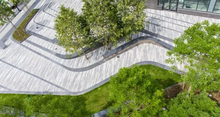 树池的配置方法和设计形式_42