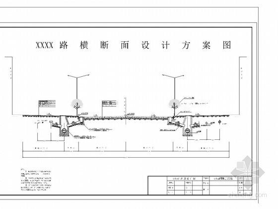 市政道路横断面设计大样图(30米宽路基)