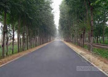 [安徽]乡村公路改建工程施工组织设计(实施性)
