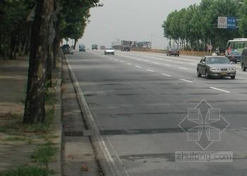 [江苏]城市道路工程石灰土路基专项施工方案