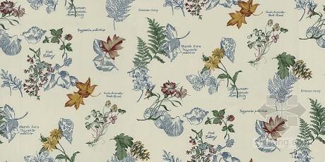 精美植物壁纸贴图