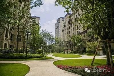 一个会种树的设计师,住宅每平方溢价3000元_2