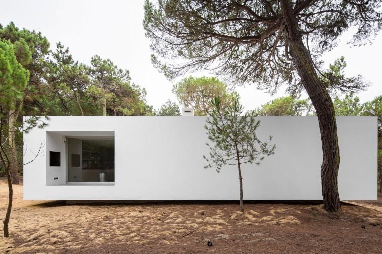 悬浮于松林沙地中的白色住宅外部实景图 (6)