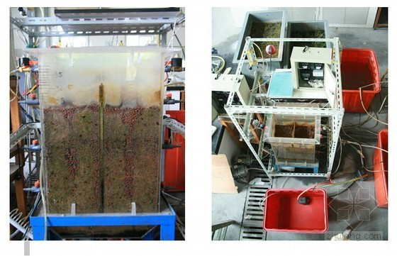 SBBR脱氮与人工湿地除磷联合工艺应用解析(图文并茂)