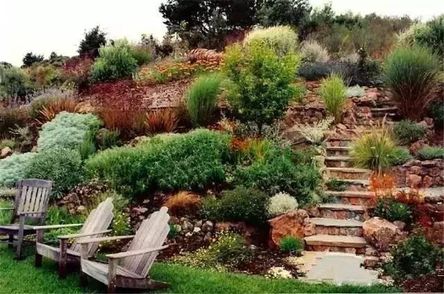 处理坡地景观高逼格方法,种草!种草!!_31