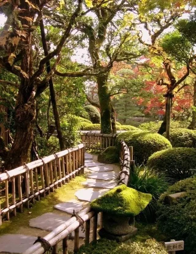 花园设计之灵魂——植物配置