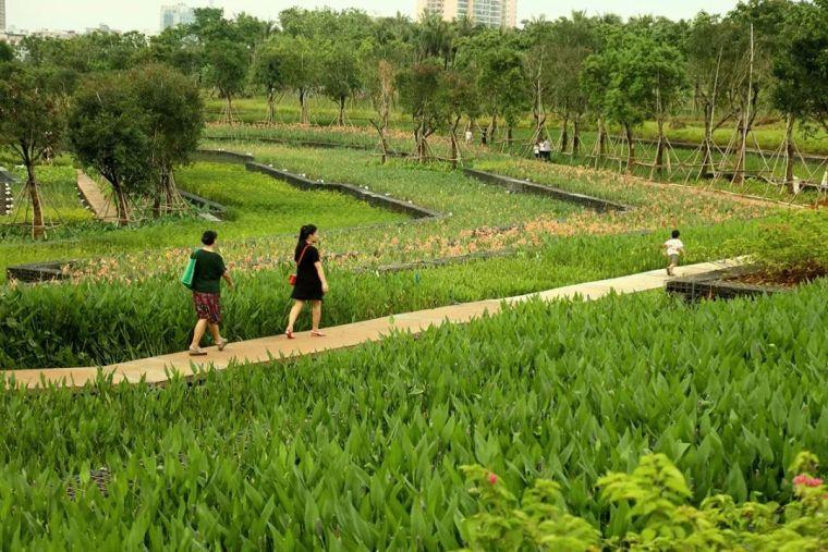 全面推进生态治水,景观设计师能做些什么?_28