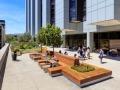 美国Cedars-Sinai医疗中心屋顶花园
