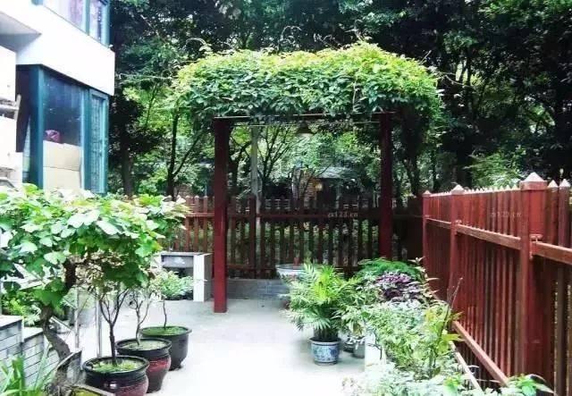 做自己庭院的设计师,造园或许没有想象的那么难!_28