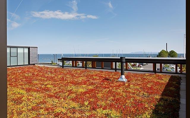 加拿大亚瑟王子码头公园景观设计_14