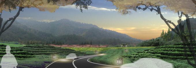 [浙江]地方性生态原野道路景观设计方案_3