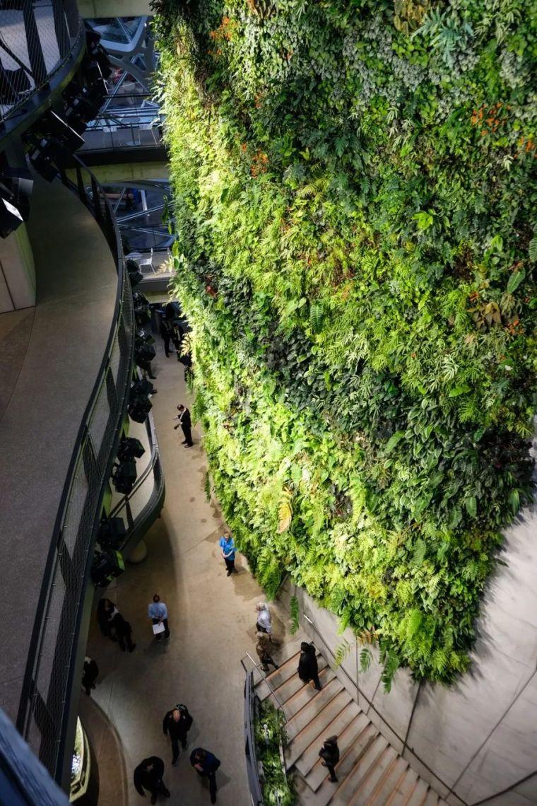 震惊!耗资40亿搬来热带雨林,这家公司为什么这么牛逼!_13