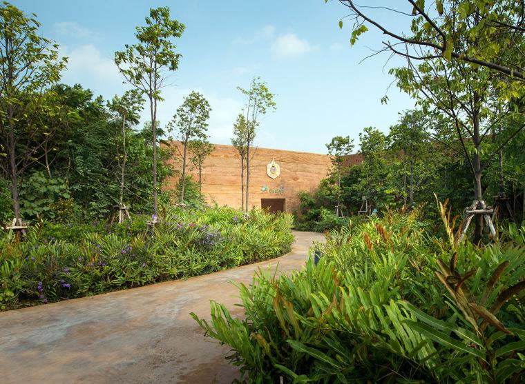 泰国都市森林公园