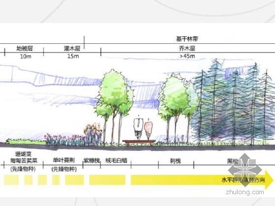 山东城市滨海开放空间概念规划设计-