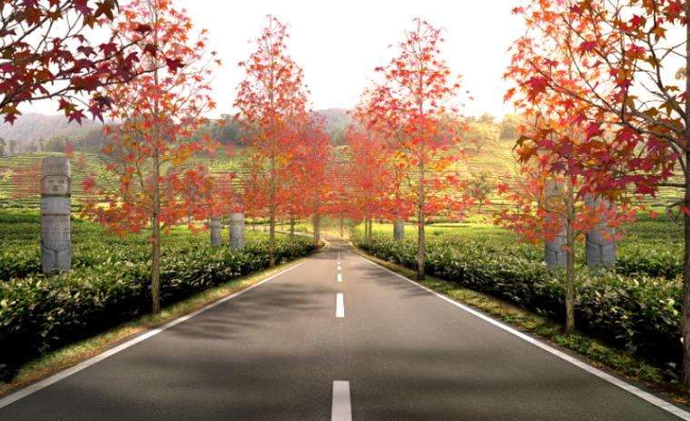 美丽乡村景观效果图PSD分层素材(6)
