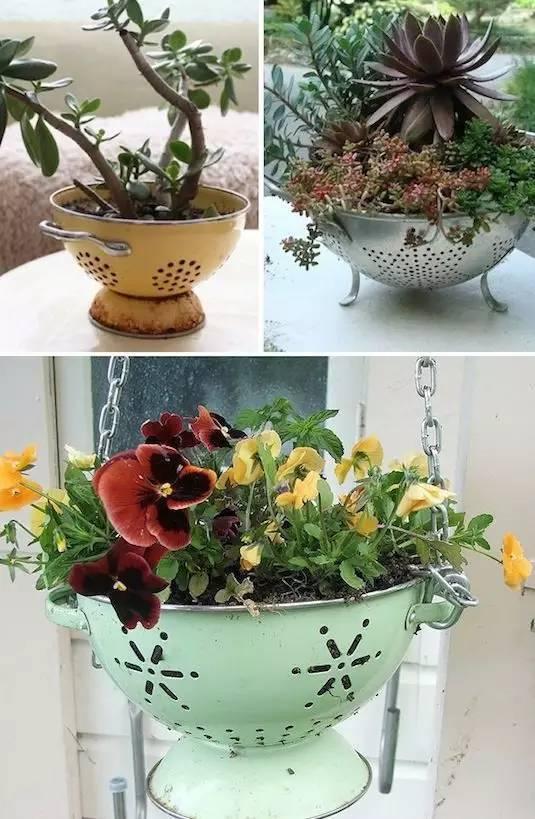 21种方法种花,比在花盆里美十倍!_9