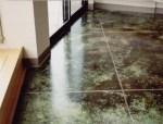 蕨绿色着色混凝土地坪