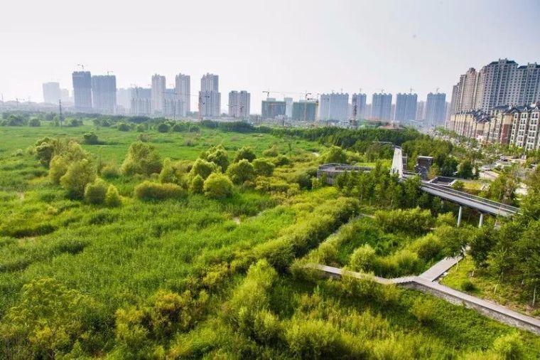 海绵城市怎么建,功效如何?看国外主流媒体如何说!_3