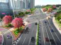 [广东]花海大道环境整治工程设计