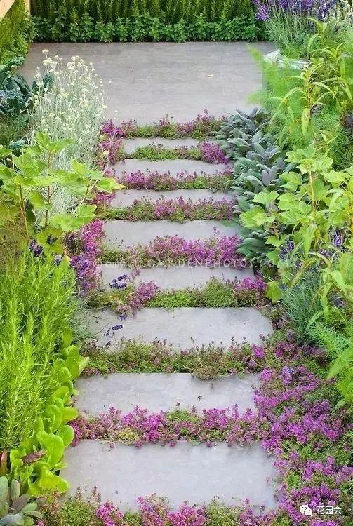 花草与石板的关系•花园小径_27