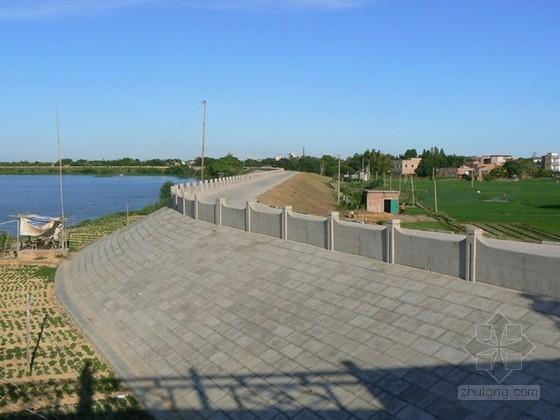 [广州]城区防洪工程监理投标大纲(资料完整 参考价值高)