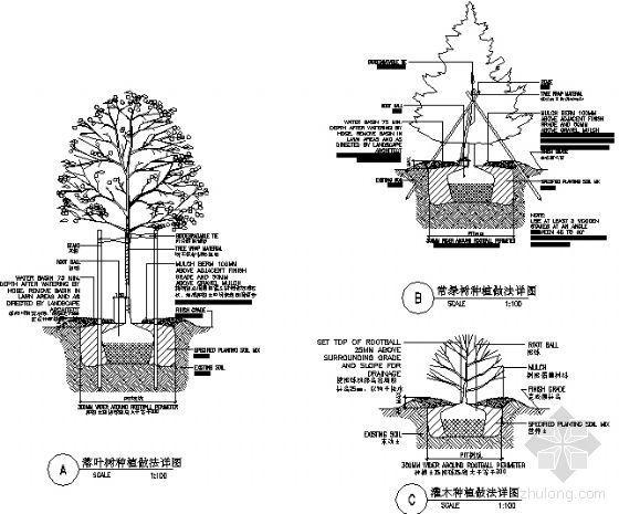 种植做法详图