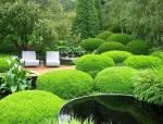 原本杂乱无章的灌木,经过设计师之手尽可以这么美!