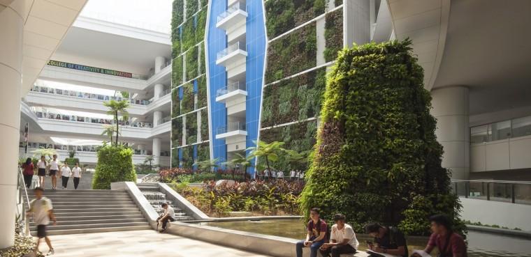 新加坡工艺教育学院-1 (1)