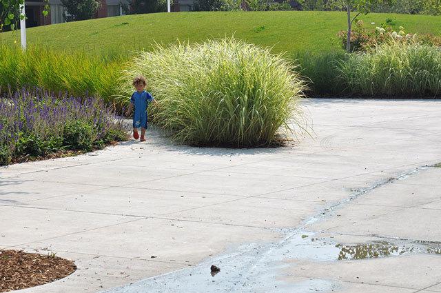 加拿大多伦多JoelWeeks公园景观设计_9