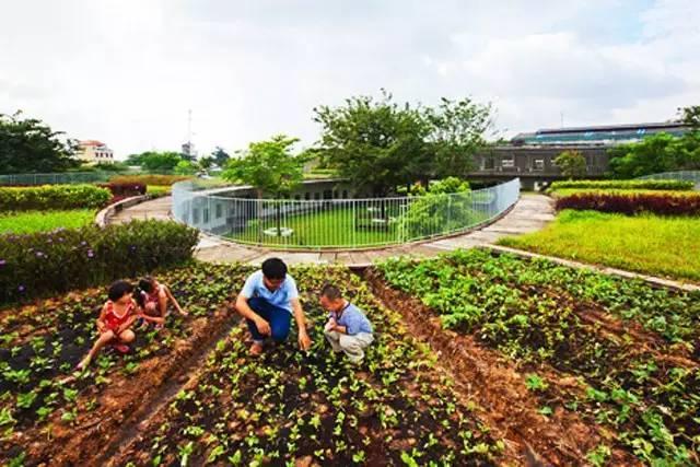 你需要知道的幼儿园景观设计法宝,责任大于天!_22