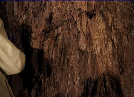 隧道工程安全质量控制要点总结_2