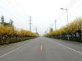 市政道路冬雨季施工方案