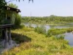 四川营山湿地公园资料免费下载
