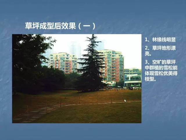 龙湖景观施工工艺标准效果(让你更懂现场)--软景篇_30