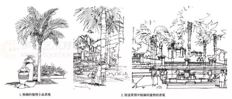 作为景观设计师必须掌握的景观线稿表现_27