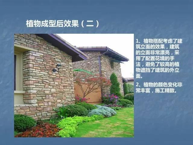 龙湖景观施工工艺标准效果(让你更懂现场)--软景篇_34
