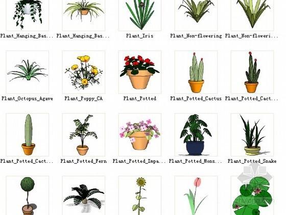 草图大师植物组件