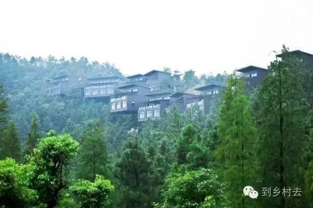 美丽民宿之莫干山里的7个特色民宿