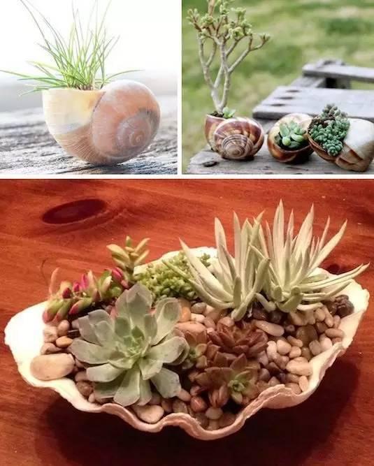 21种方法种花,比在花盆里美十倍!_15