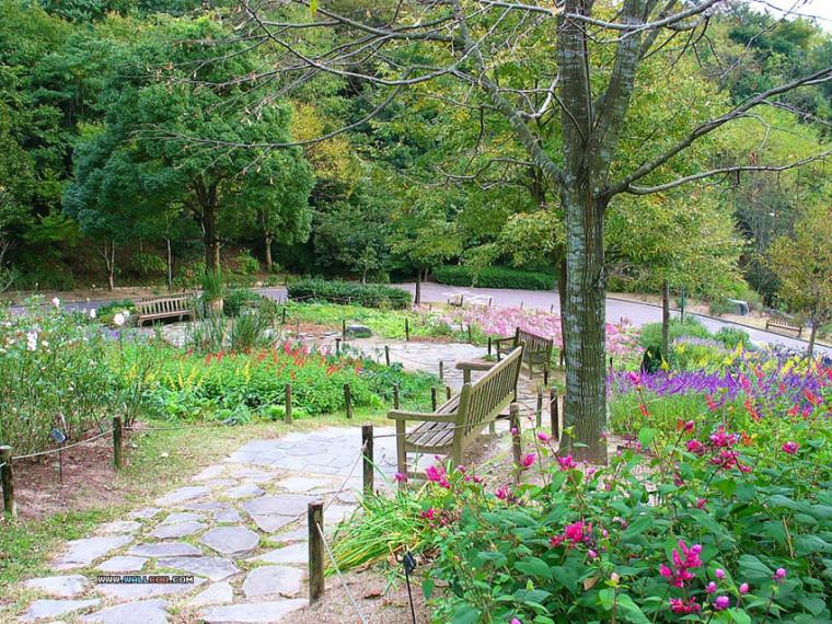 疗愈花园(healing garden)景观设计方法