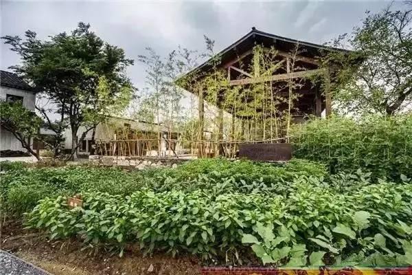 景观案例|从休闲旅游开始的乡村改造