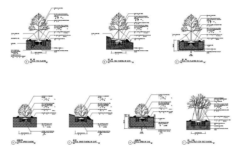 [四川]成都知名地产名城某居住区景观设计全套施工图(包含+植物配置)-种植说明