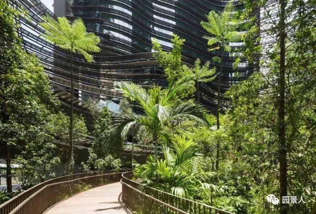 景观中庭,建筑群的心脏!_31