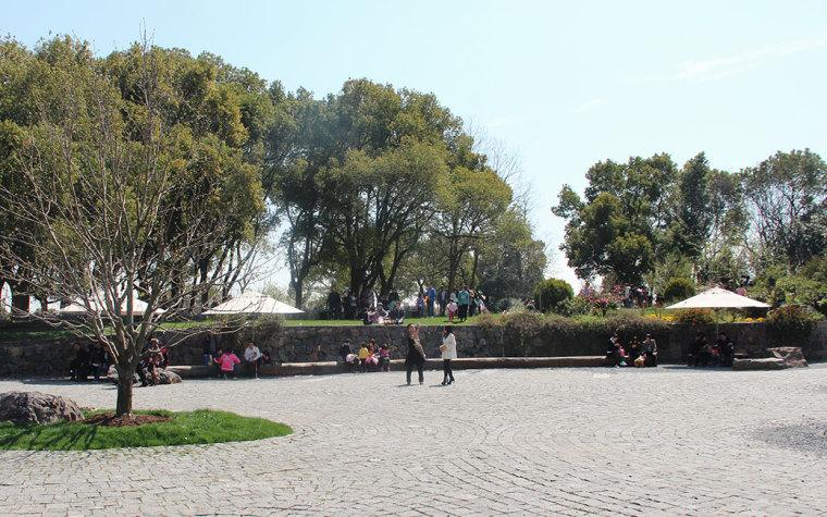 上海辰山植物园-19